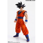 IMAGINATION WORKS Son Goku Dragon Ball Z BANDAI SPIRITS