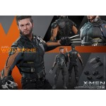 (T15E22) Hot Toys MMS 264 X-Men Wolverine 1/6 days of future past
