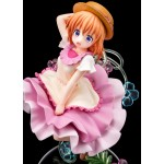 Is the order a rabbit? BLOOM Cocoa in Full Bloom Summer Dress Ver. 1/7 Hakoiri Musume