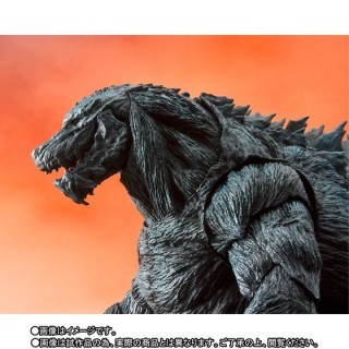 SH S.H.Monster Arts Godzilla Earth Bandai Limited