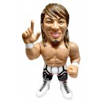 16d Collection 006 New Japan Pro-Wrestling Hiroshi Tanahashi 16 directions