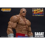 Ultra Street Fighter II The Final Challengers Storm Collectibles